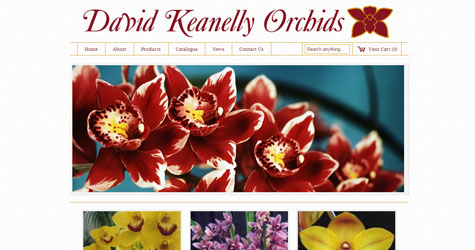 David Keanelly Orchids